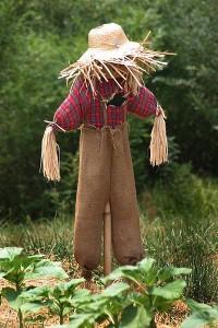 Scarecrow songs & scarecrow song ideas for kids and preschoolers in daycare.