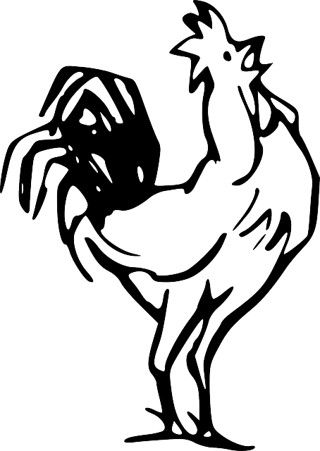 Rooster farm animal coloring pages